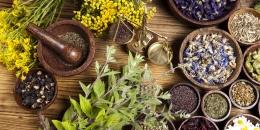 Výběr bylinných a rostlinných příchutí